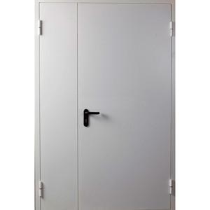 Двупольная оцинкованная дверь