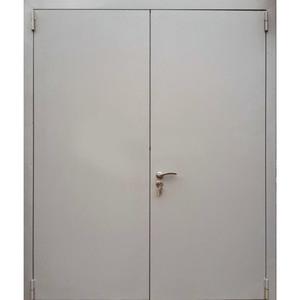 Двери оцинкованная ДМ-00881