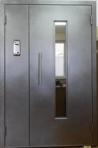 """Домофонная дверь """"Зион 6"""""""